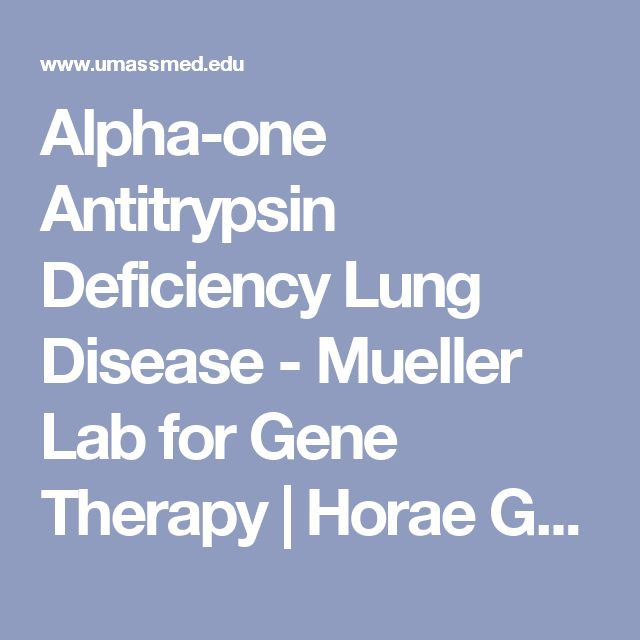 Alpha-one Antitrypsin Deficiency Lung Disease - Mueller Lab for Gene Therapy | Horae Gene Therapy Center | University of Massachusetts Medical School