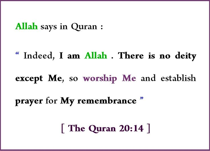 "Allah says in Quran :  "" Indeed, I am Allah . There is no deity except Me, so worship Me and establish prayer for My remembrance "" [ The Quran 20:14 ] #islam #quran #allah #muhammad #prophet muhammad #god #religion #verses #jesus #christ #bible #kindness #quotes #quoteoftheday #quote #love #motivation #inspiration #usa #uk #canada #pics #memes #vibes"