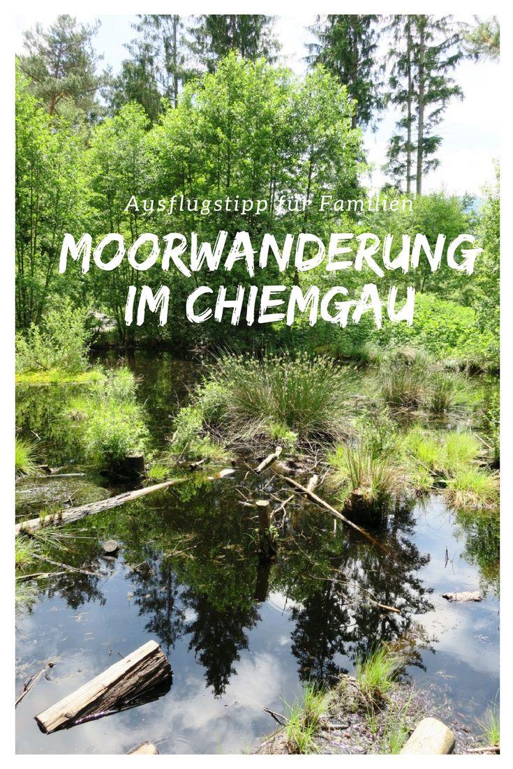 Ein naturnahes Ausflugsziel für die ganze Familie in Oberbayern, Deutschland.