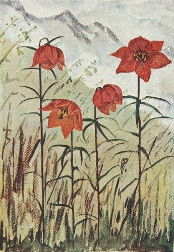 FARRER, Reginald J. The Plant Introductions of Reginald Farrer.  New Flora and Silva Ltd. 1930. #flowers #limited edition