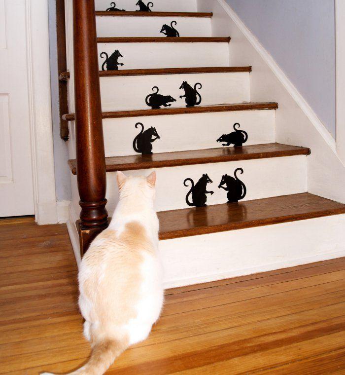 Tous les conseils pour peindre ou vernir un escalier