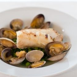 True Cod and clams, sea beans/rocket/English peas, fines herbs fish ...