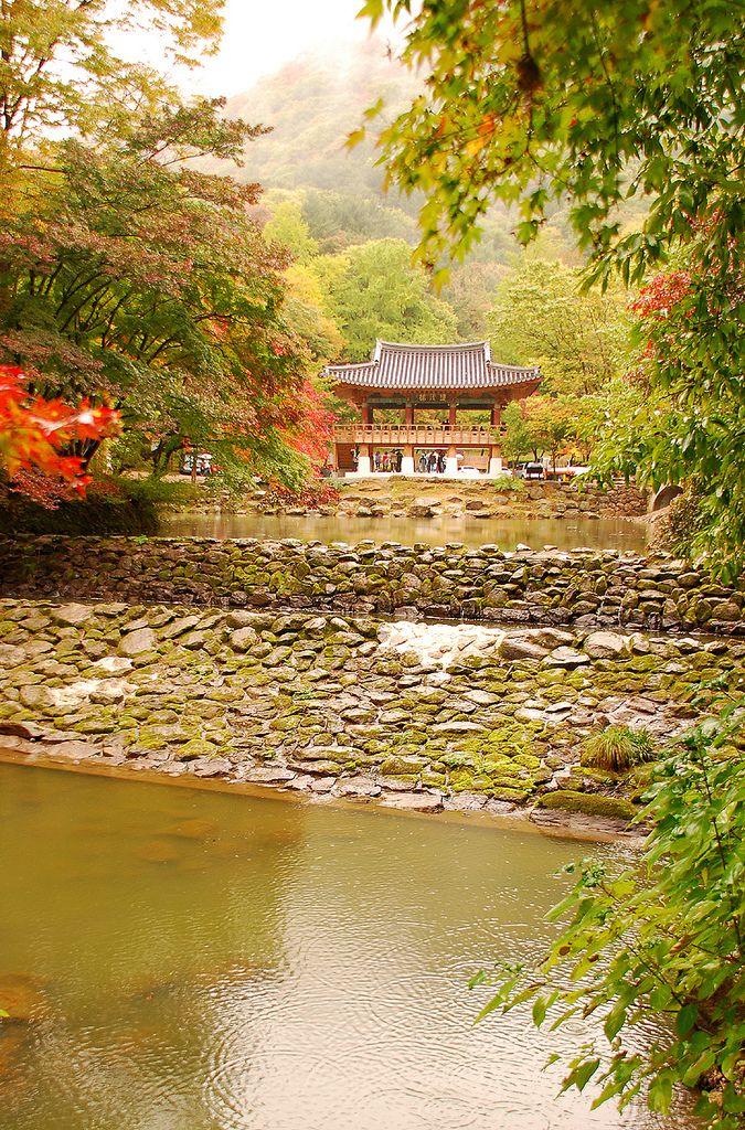 Baekyangsa, Gwangju, Jeollanamdo, South Korea. I would like being there now... :(