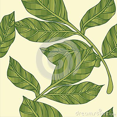Beautiful tropical seamless pattern of Leaf vector pattern