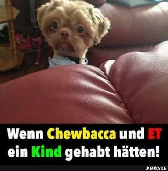 Wen Chewbacca und ET ein Kind gehabt hätten! | Lustige Bilder, Sprüche, Witze, echt lustig – Tweety Tweety