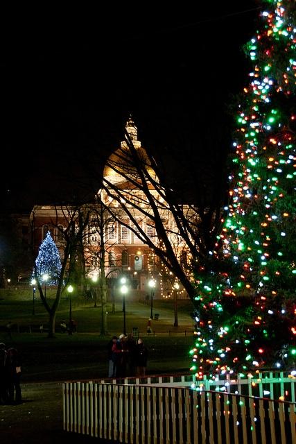 Boston Common Christmas Tree & State House
