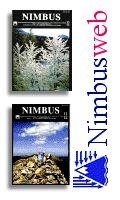 Nimbus Web Eventi Meteorologici - La nevicata del 13-14 dicembre 2001