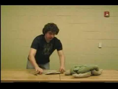 towel turtle!
