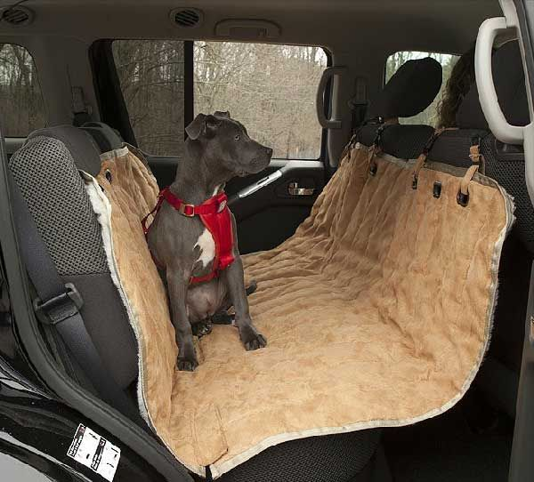 17 best images about dog gadgets on pinterest cars safety and booster seats. Black Bedroom Furniture Sets. Home Design Ideas