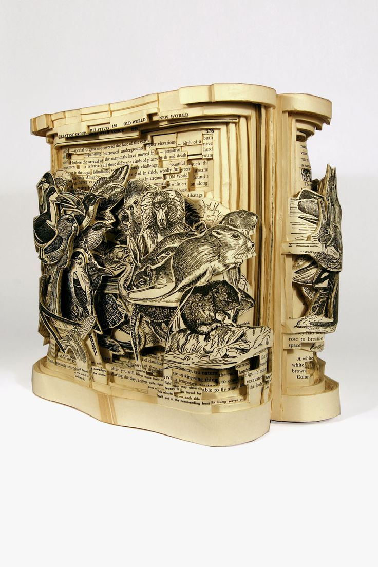 """Kingdom, 2008, Altered Books, 9-5/8"""" x 10-3/4"""" x 9-3/4"""" - Image Courtesy of the Artist and Kinz + Tillou Fine Art - Book Art by Brian Dettmer"""