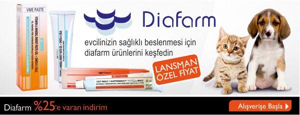 http://www.kolaymama.com/arama?q=diafarm&Kid=T%C3%BCm+Kategorilerde