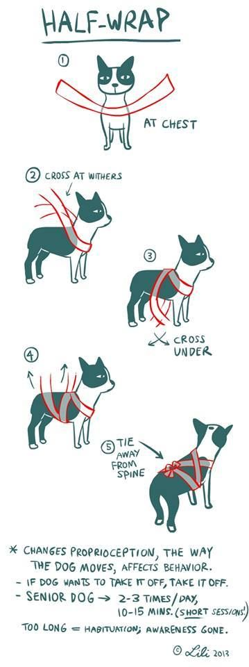 How to make a wrap with an Ace bandage.  Thundershirt idea was based off of this.  For dog's fearful times, thunderstorms, fireworks.