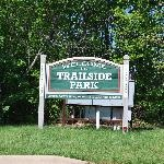 Trailside Park In Ashburn, Virginia.