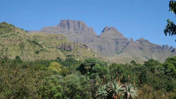 Cathkin Valley, Central Drakensberg, South Africa