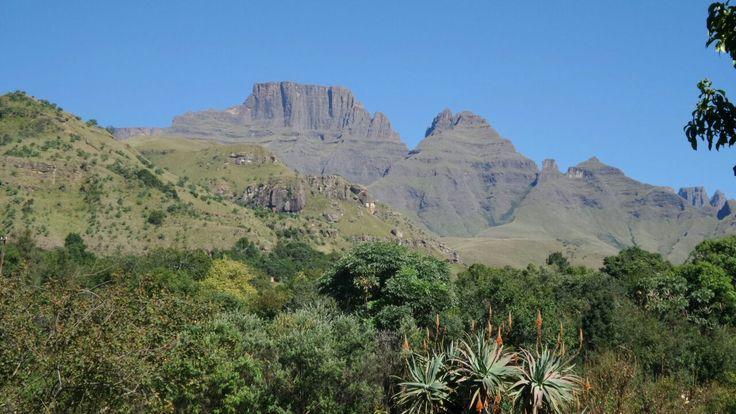 Cathkin Valley, Central Drakensberg, South Africa