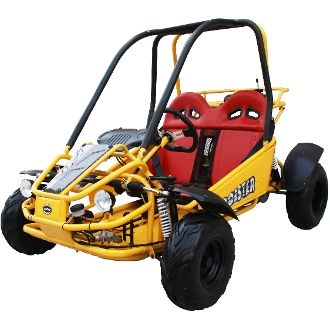 %TITTLE% -  Go Karts for Sale! Cheap, Buy a go kart online now and save... - http://acculength.com/dirt-bikes/go-karts-for-sale-cheap-go-karts.html
