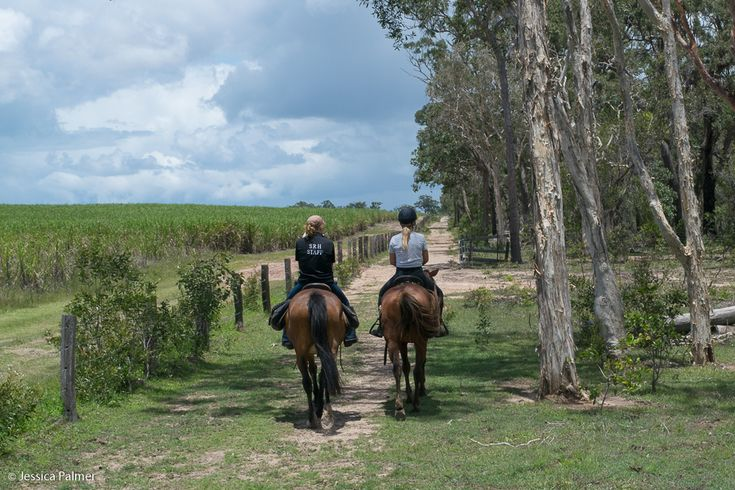 Horse Riding at Susan River Homestead in Queensland, Australia #visitfrasercoast #thisisqueensland #susanriver