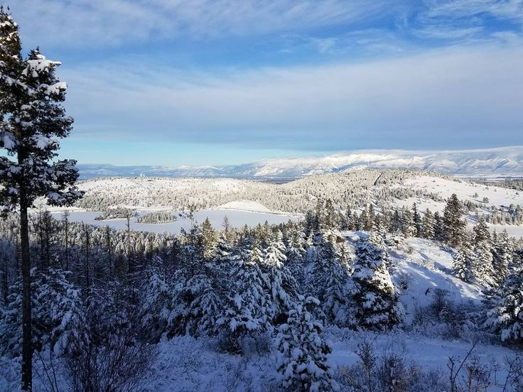"""A beautiful sight we're happy tonight walking in a winter wonderland"" #nofilter . . . . . . . . . . . . . #winter #wonderland #snow #sky #beautiful #view #life #love #optoutside #Montana #Flathead #lake #trees #cold #blue #white #mountains #hiking #trail #hikingpaula #hiker #hikingforliving #getoutside #trailtime"