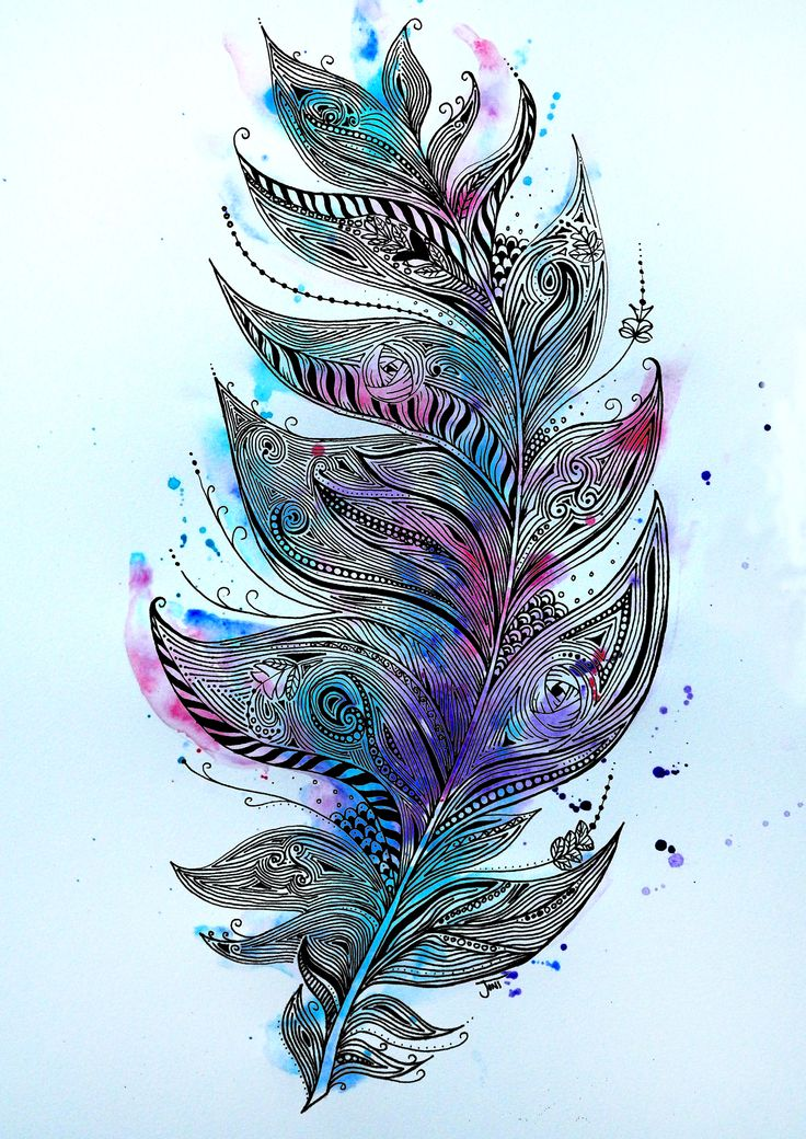 Zentangle Feather Illustration. Ink pen hand #Drawing with #watercolour  www.facebook.com/jonismithart to buy any of my art or art prints