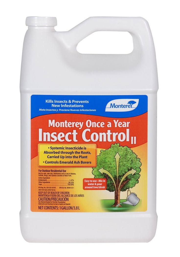 monterey insect control