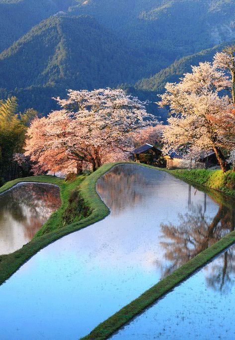 Mitake, Gifu Prefecture, Japan: - holidayspots4u