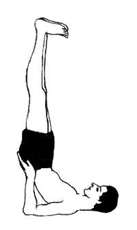 yoga exercise viparita karani inverted lake pose  how
