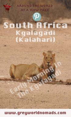 Early Morning In Kgalagadi Transfrontier Park, South Africa