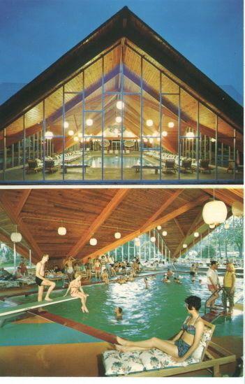 Loch Sheldrake Ny Hotel Evans Indoor Pool Postcard