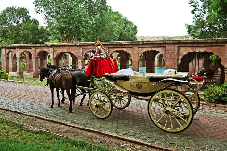 Buggy Ride in the Gardens