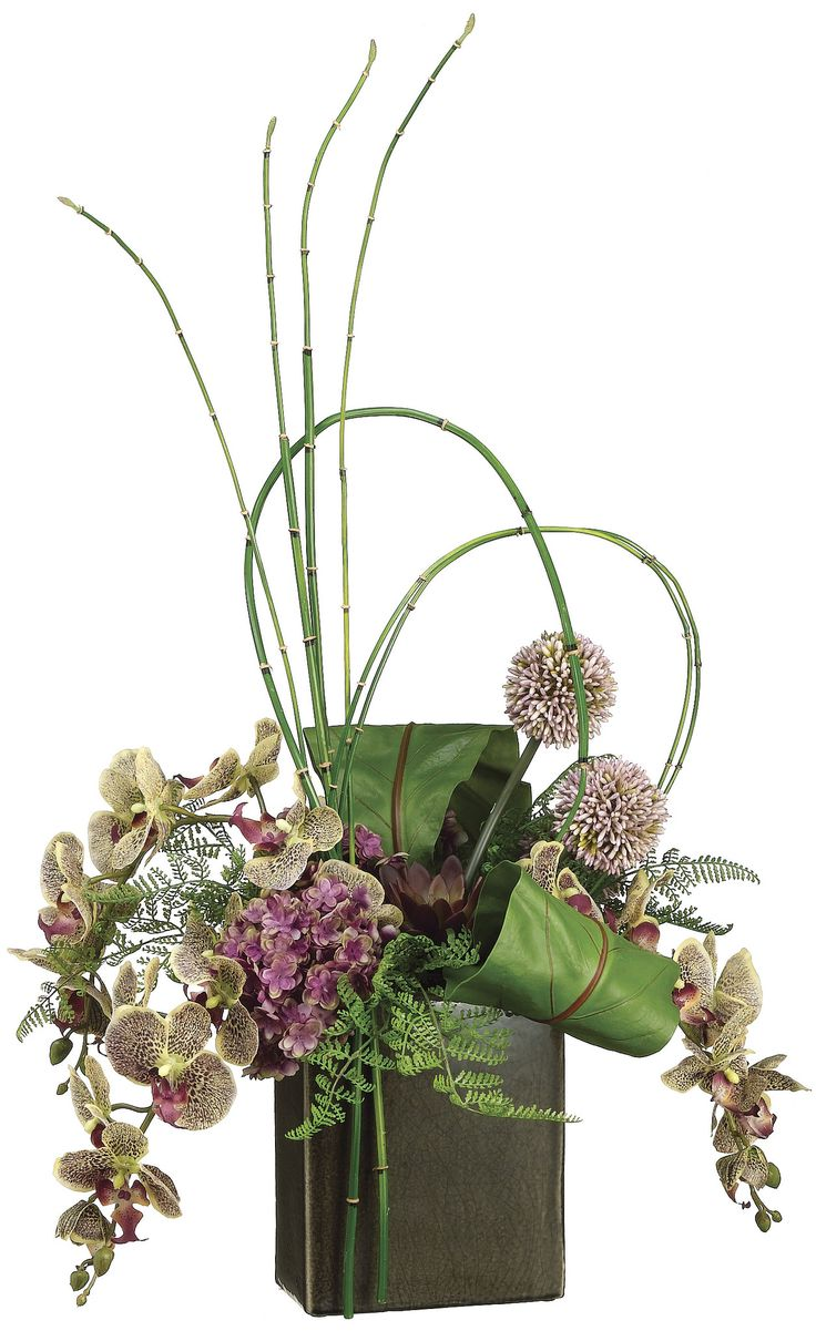 Phalaenopsis Orchid, Bird Nest Fern and Bamboo Arrangement