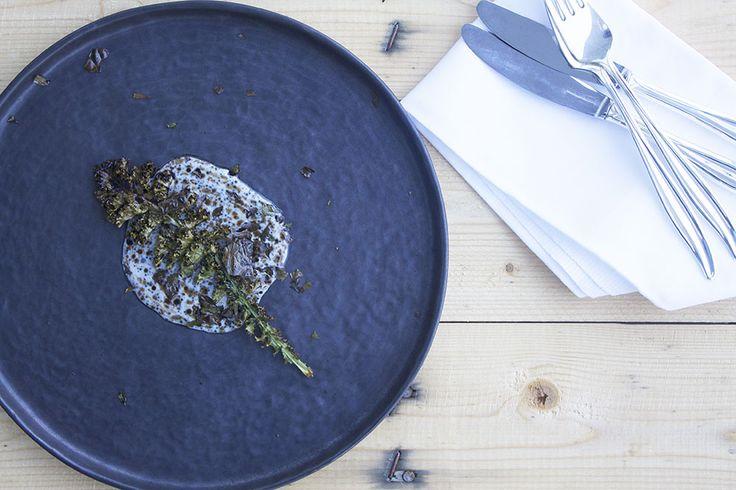 Kål, kærnemælk og maltolie // Cabbage, buttermilk and malt