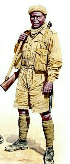 Commonwealth soldier, North Africa WWII