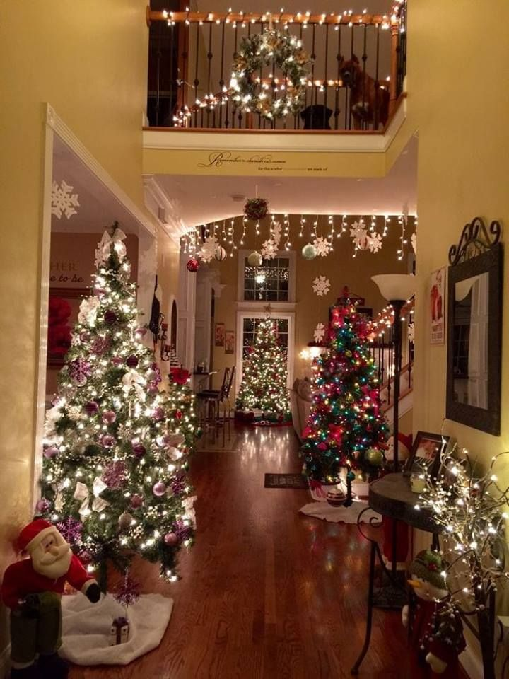 Pin by Marcie Cahill on Christmas Trees Christmas, Christmas