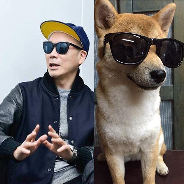 """. Utamaru """"宇多丸"""" He is the origin of Uta's name . うた feat.宇多丸師匠 うたの名前は、心から尊敬する宇多丸師匠から頂きました .う〜たまるぅ〜たまるぅ〜 動物に装飾するのはあんま好きじゃないんですけど、嫌がってなかったし、飼い主のエゴでこればかりはと載せちゃいました笑.  #shibainu #dog #animal #shibagram  #puppy #柴犬 #girl #いぬ #dogsofinstagram #lifestyle  #hund #chien #cane #perro #pies #日本犬  #犬バカ部 #instadog #follow #cute #ライムスター #japan #baby #follow4follow #rhymester #宇多丸 #hiphop #music"""