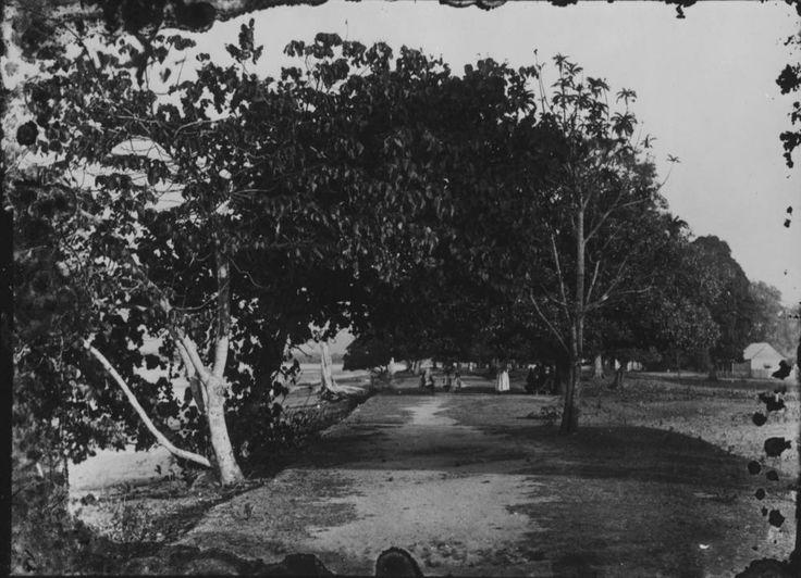 Cairns Esplanade adjacent to Cairns Harbour, ca. 1890