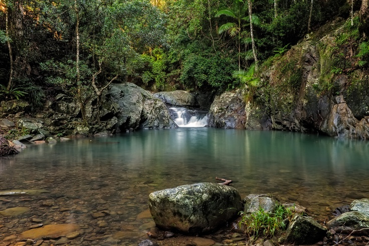 One of the waterholes that are abound along Currumbin Creek, in the Springbrook National Park.  Mt Cougal, Currumbin Valley, Queensland