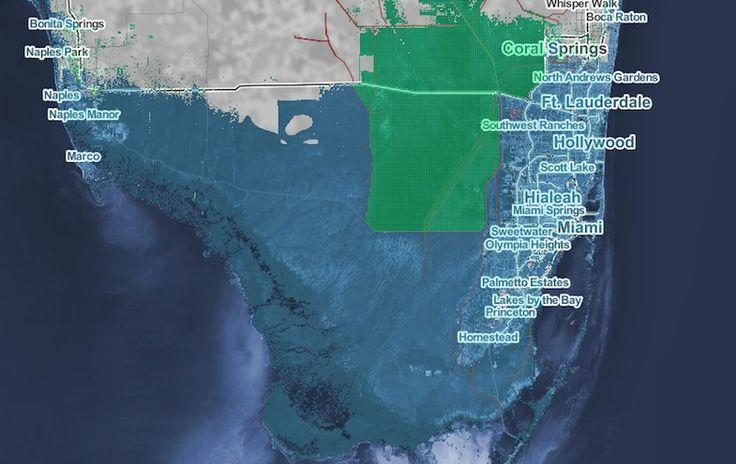 Explore your local sea level rise risk.