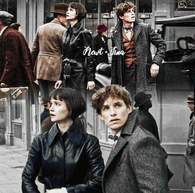 Eu Prefiro A Tina Do Que A Lestrange With Images Fantastic