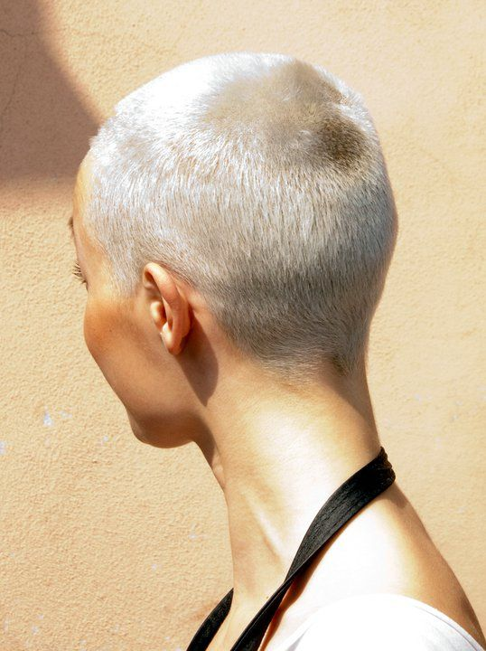 platinum buzz cut