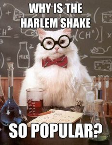 Why Is The Harlem Shake (the next big viral meme after #Gangnamstyle) So Popular - TechCrunch digs into the Science behind it.