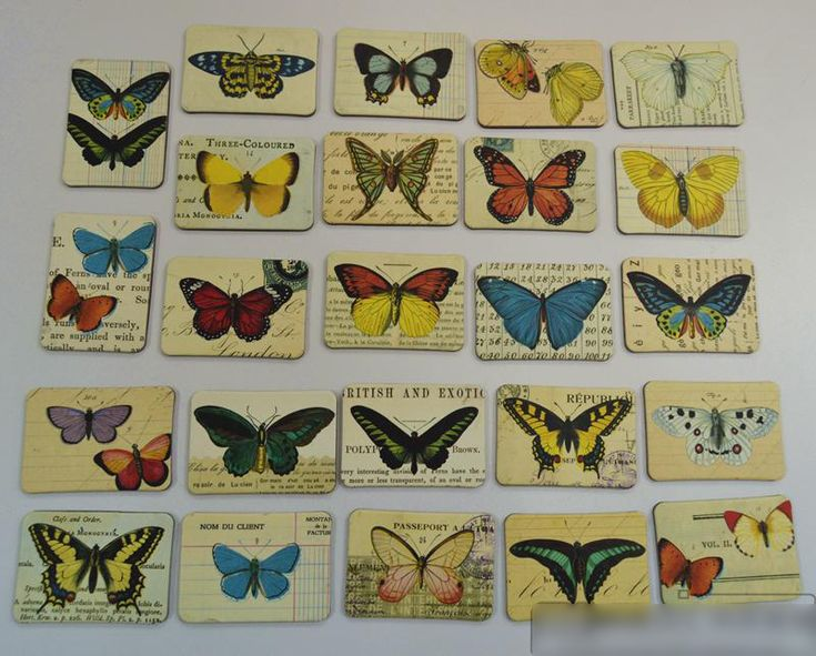 Find More Fridge Magnets Information about Countryside Butterfly 24 Piece Magnetic Fridge Magnets Refrigerator Sticker Decoration Accessories Magnetic Paste Arts/Crafts,High Quality magnetic fridge magnets,China magnet refrigerator Suppliers, Cheap fridge magnet from Lucky100% on Aliexpress.com
