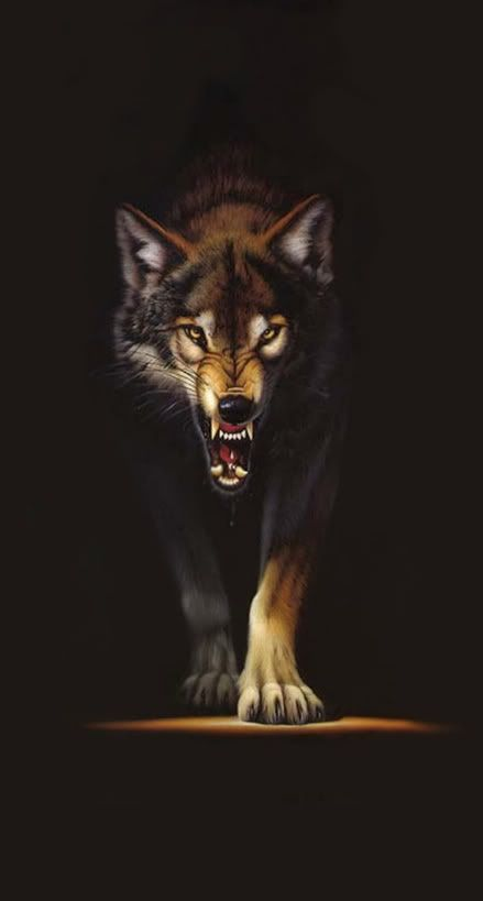 Wolf - Years ago, I bought this on a T-shirt for my husband (because he was being rather 'testy.')