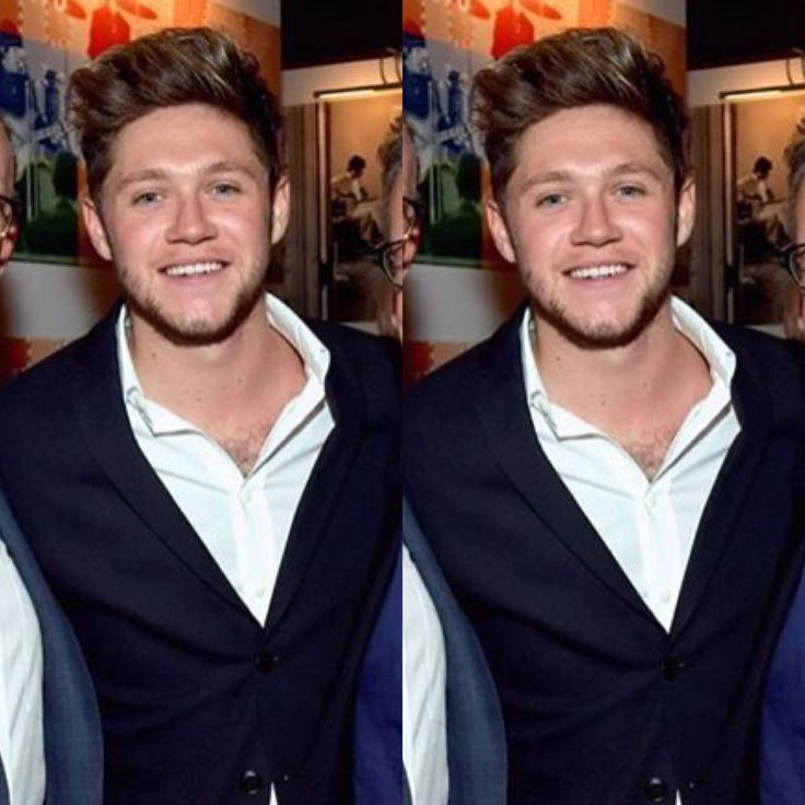 Niall Horan 2017 Brown Hair