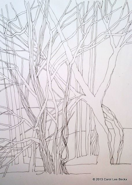 #12 Draw three things out and about. Ok there are a few more than three... These are some trees in a forest close to my home. Ink in Zeta sketchbook.