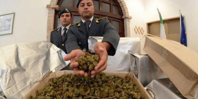 Itali, kapet skafi me 500 kilogramë kanabis nisur nga Shqipëria