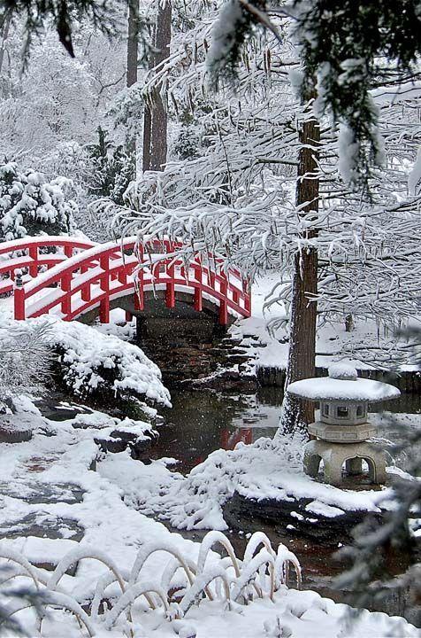 Winter Japanese Garden, Snowy Bridge Trees