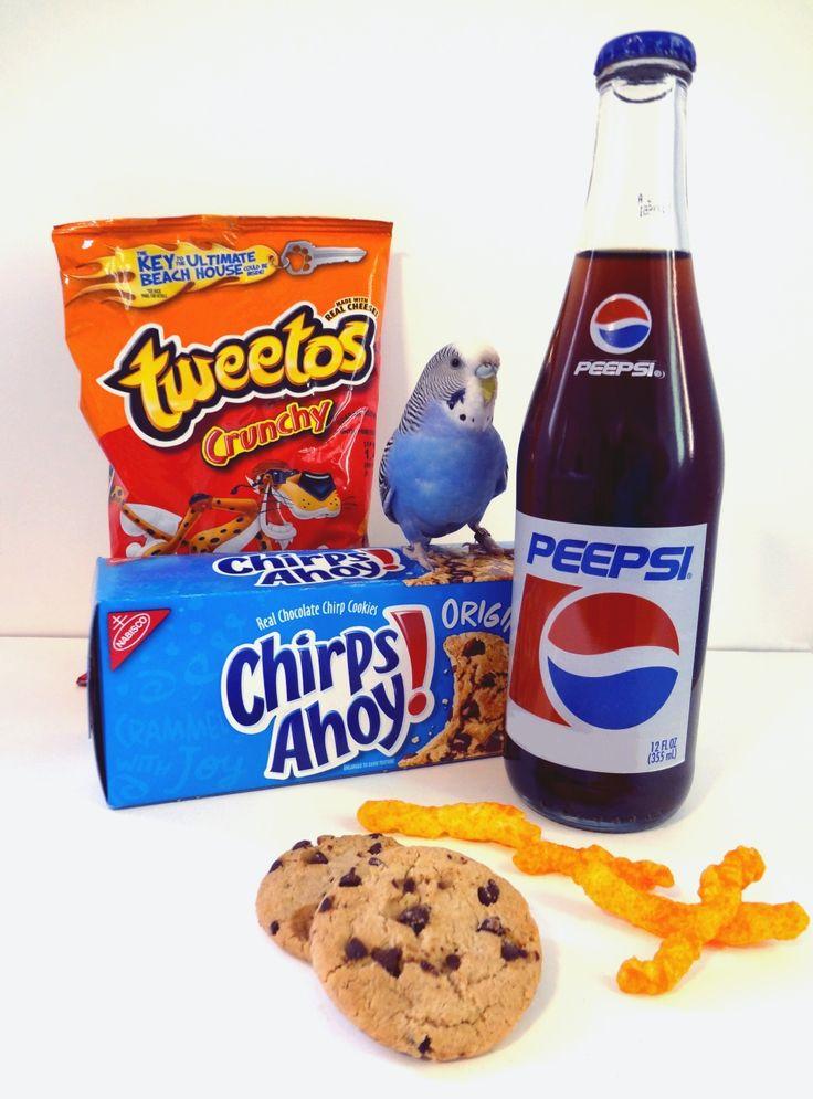 It's National Junk Food Day! Budgies Love junk food