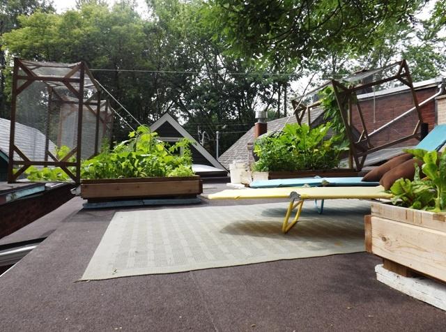 A DIY Organic Rooftop Vegetable Garden. 232 best Urban Garden   Roof top Vegetable Gardens images on