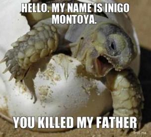 1859a08e058f10ab592967e683bf159d turtle meme sea turtles die besten 25 turtle meme ideen nur auf pinterest niedliche,Turtle Meme Generator