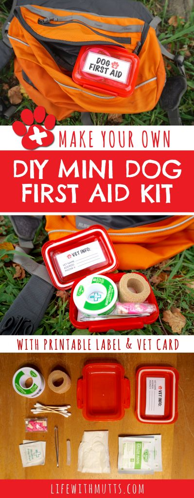 You don't want to lug around a full size first aid kit, but want to be ready in case your dog gets injured on the trail. This mini DIY Dog First Aid Kit is perfect for hiking!